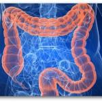 salute del colon